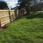 Treated Pine Paling Fencing