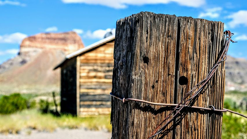 How much does timber fencing cost Hobart
