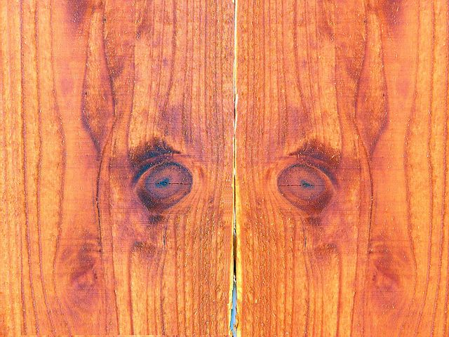 Timber Fencing Panel